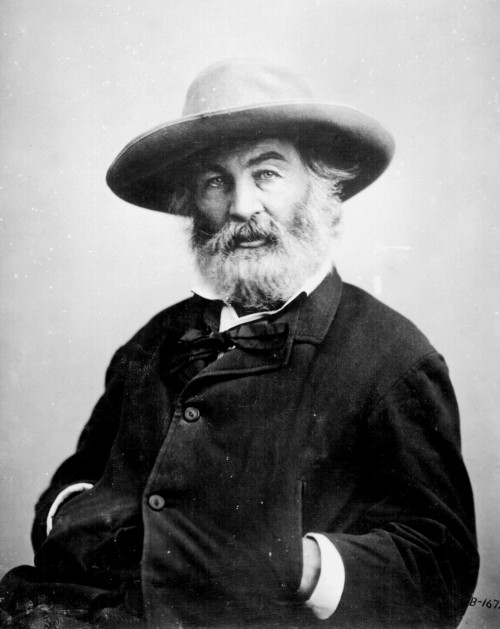 Walt_Whitman_by_Mathew_Brady-e1486222600582